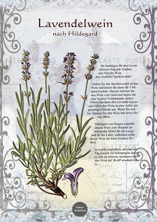 Lavendelwein nach Hildegard