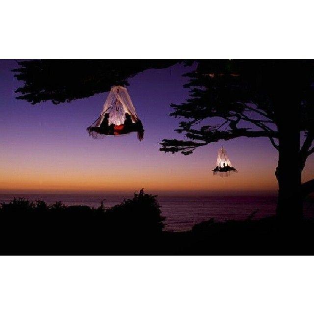 Кемпинг на деревьях. Калифорния, США. #остров #я #жара #путешествие #отдых #горы #лес #курорт #красота #берег #тур #пляж #море #небо - @wow_travel- #webstagram