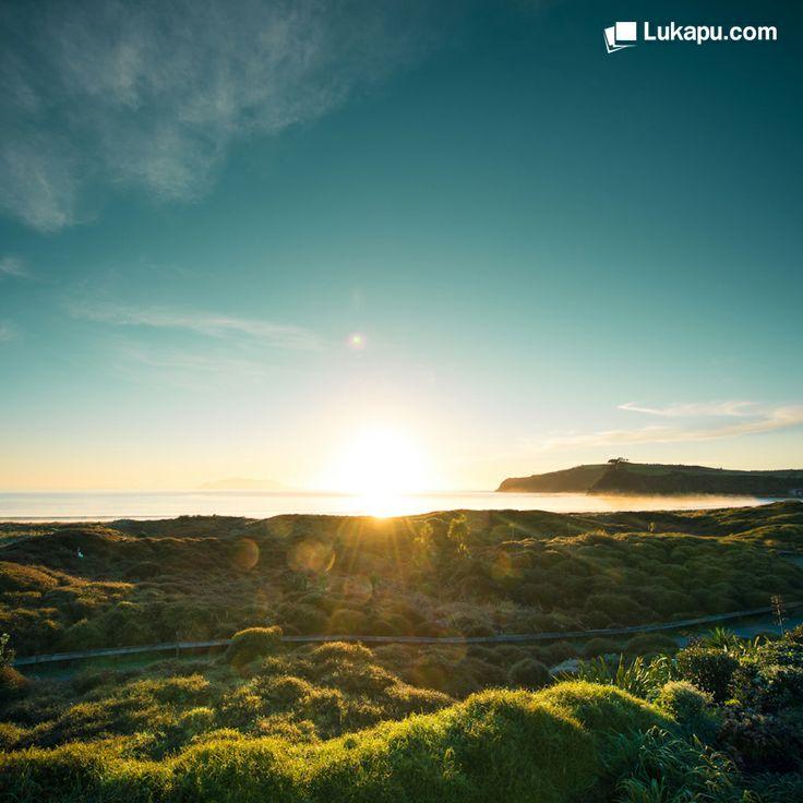 Mutlu bir gün geçirmeniz dileğiyle :) #Lukapu #Fotokitap #Fotograf #Album