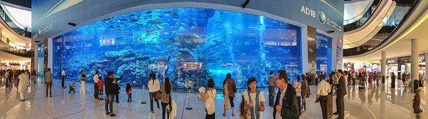 Aquarium in an Airport | 10 Crazy And Outrageous Aquariums