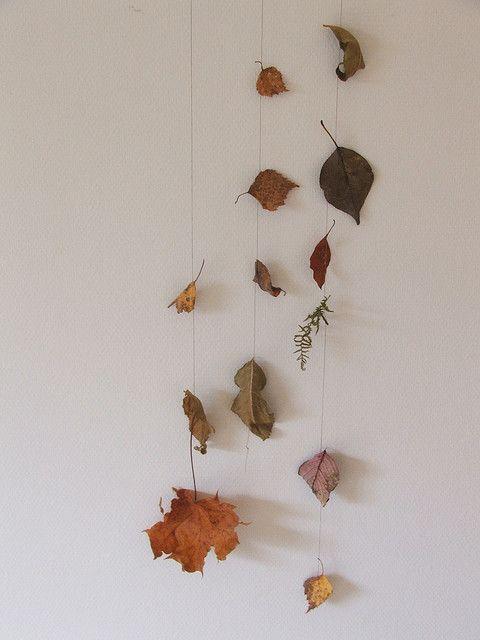 leaf collection, leuk knutsel idee om met de kids te maken #herfst