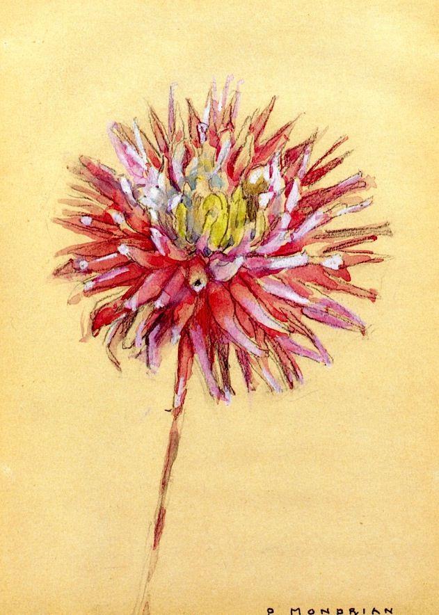 Dahlia Piet Mondrian - circa 1920-1925