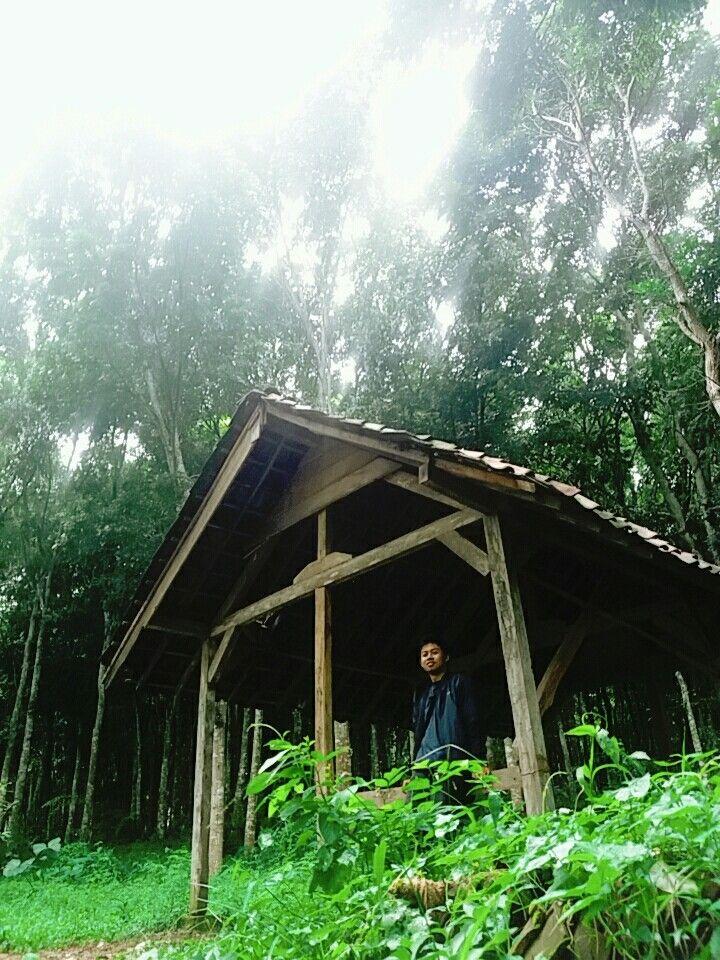 Feel the nature! Taken in ongakan, puncu kab kediri #exploreindonesia #explorekediri