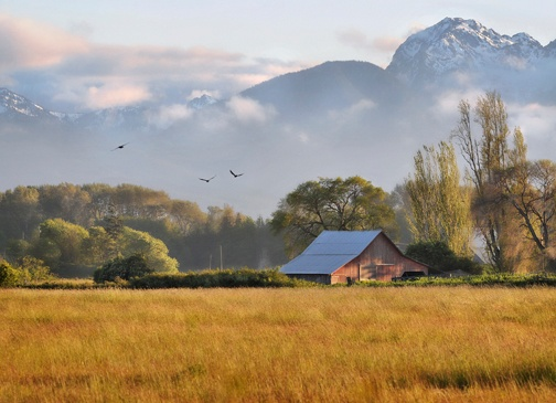 Sequim, WA- one of my very favorite places