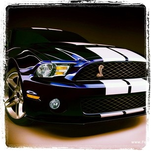 [white stripes on the glorious mustang for increased power :P  ] ... This is p e r f e c t I o n