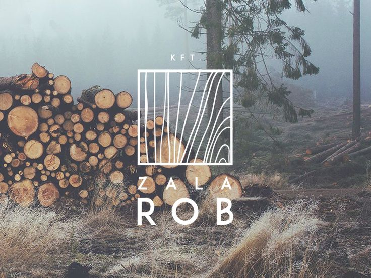Currently working on a corporate identity for a customer who sells Wood. Here is my first preview of his Logo. More coming soon.