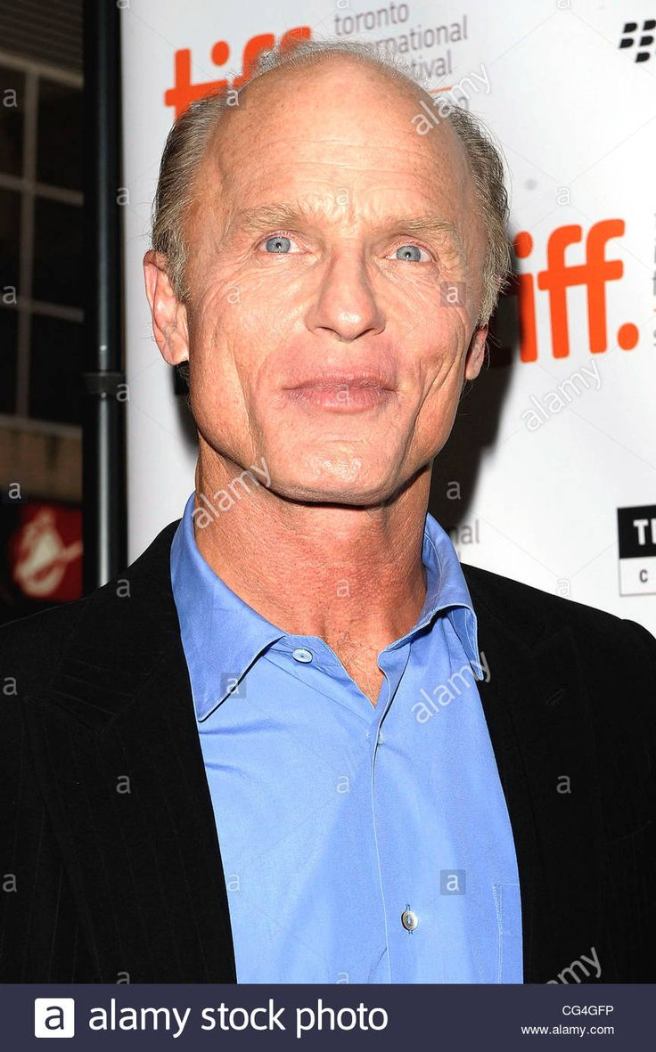Download this stock image: Ed Harris The 35th Toronto International Film Festival - 'What's Wrong With Virgina' premiere arrival at the Elgin Theatre. Toronto, Canada - 15.09.10 - CG4GFP from Alamy's library of millions of high resolution stock photos, illustrations and vectors.