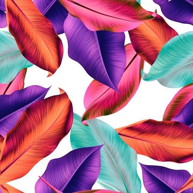 #artdesign #patternbank #floralprint #patterndesign #printdesign  #artblog #botanica #digitaldesign #digitalcollage #surfacepatterndesign #tropicalvibes #botanicalart#textiledesigner #tropicalflowers #tropicaleo  #textileprint #tropicalprint #patterndesigner #tropicale #tropicals #artgraphic #tropicalplant  #tropicaldesign IG: @themishaart
