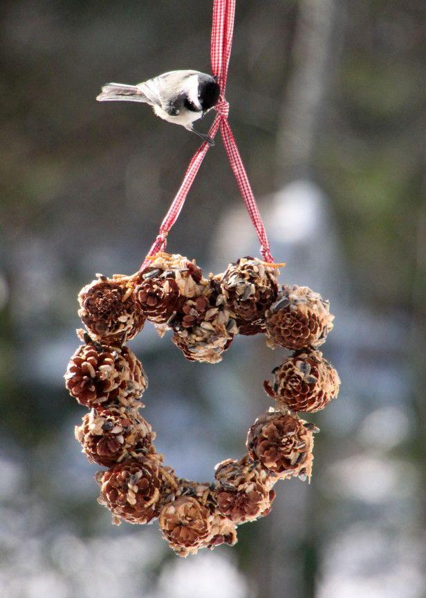 Make a Heart-Shaped Feeder for the Birds --> http://www.hgtvgardens.com/crafts/make-a-valentines-day-bird-feeder?soc=pinterest