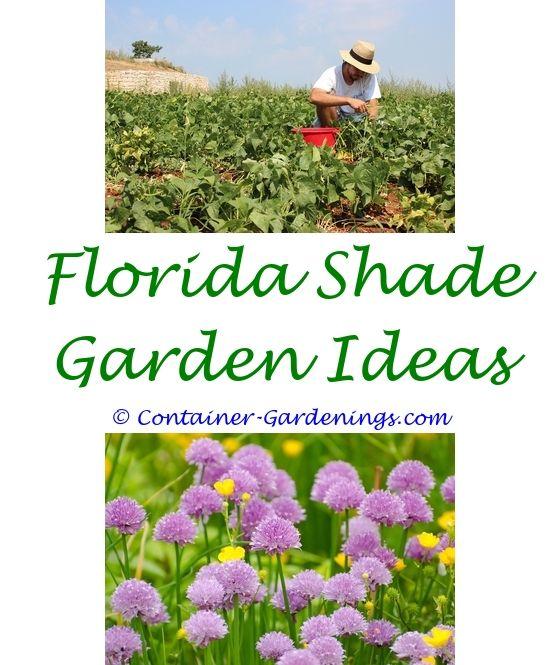 Garden Wiki   Garden ideas, Bush garden and Gardens