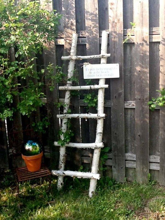 Tree branch ladder