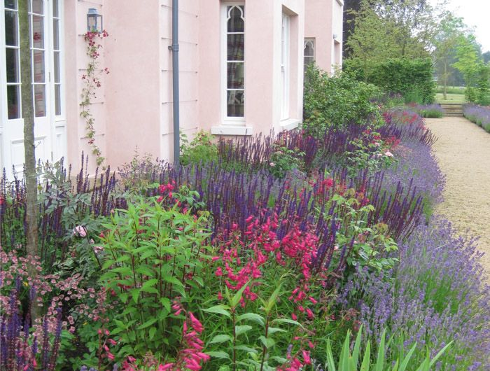 A lovely combination of colours by one of my favourite garden designers. Hampshire-garden Jinny Blom