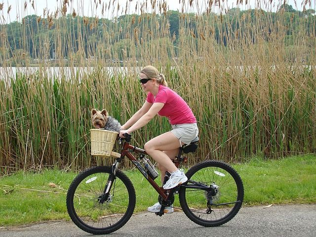 And her little dog, Todo! #HybridBikes: On or Off-Road https://impressme.com/article/hybrid-bikes-on-or-off-road/#.VJiImV4AKA