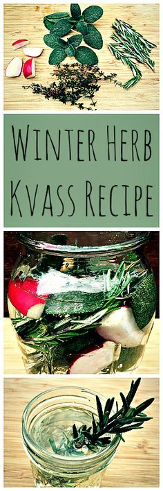 Winter Herb Kvass Recipe