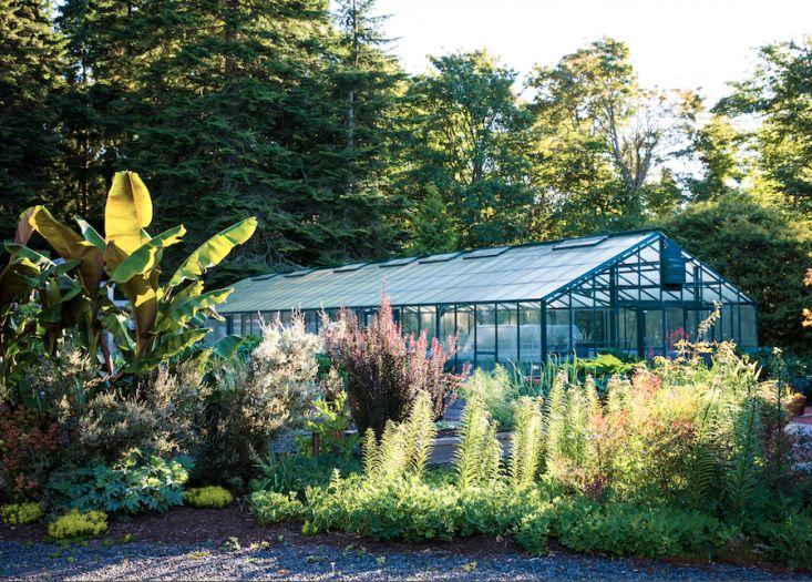 dan-hinkley-garden-design-gardenista