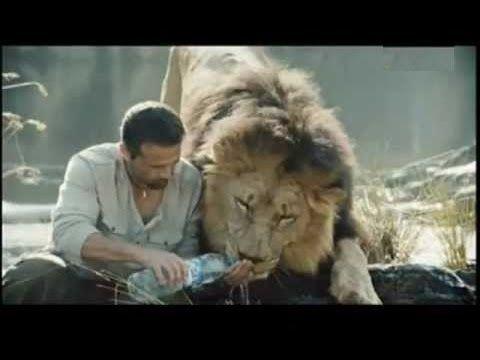 Amazing Lion Ranger Kevin Richardson 3/3 (National Geographic Documentary) - YouTube