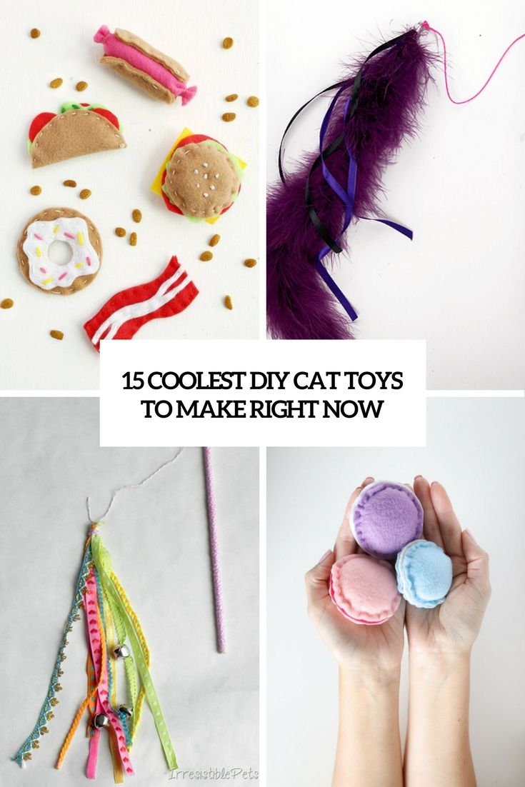 15 coolest diy cat toys to make right now
