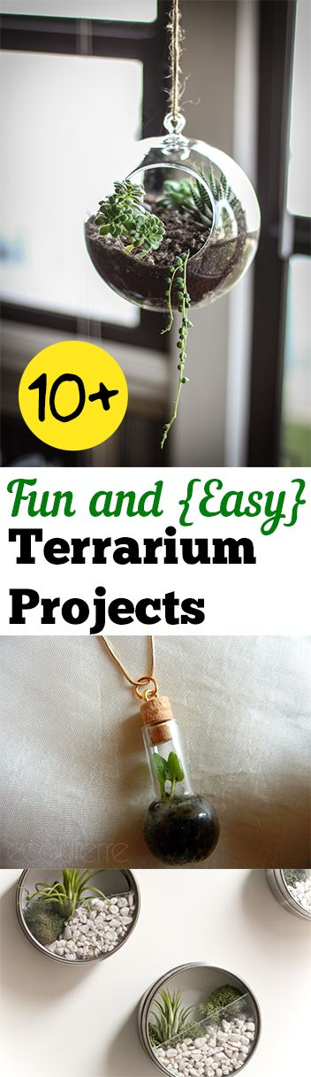 10+ Fun and {Easy} Terrarium Projects.Gardening, home garden, garden hacks, garden tips and tricks, growing plants, plants, vegetable gardening, planting fruit, flower garden, outdoor living