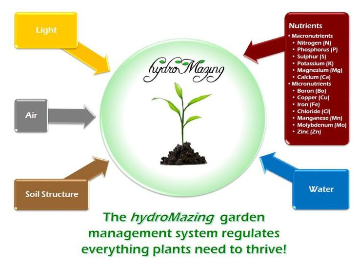 1000 images about automatic gardening on pinterest pictures of hydroponic systems and electric