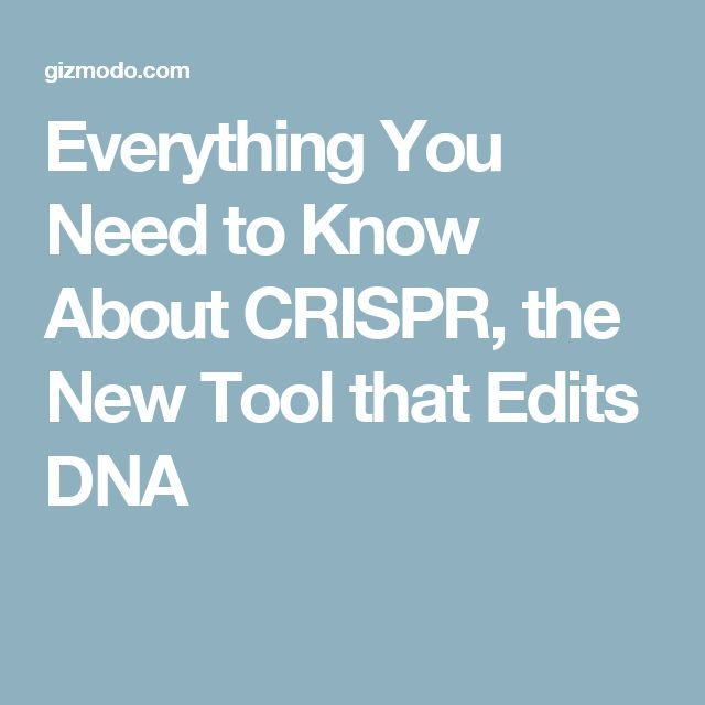 Everything You Need to Know About CRISPR, the New Tool that Edits DNA