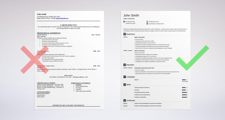 Resume Summary For It Professional - Vision specialist