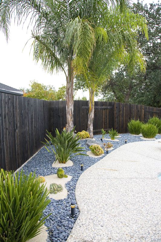 Modern landscaping. Tropical, sand, Mexican pebbles, palm trees, succulents