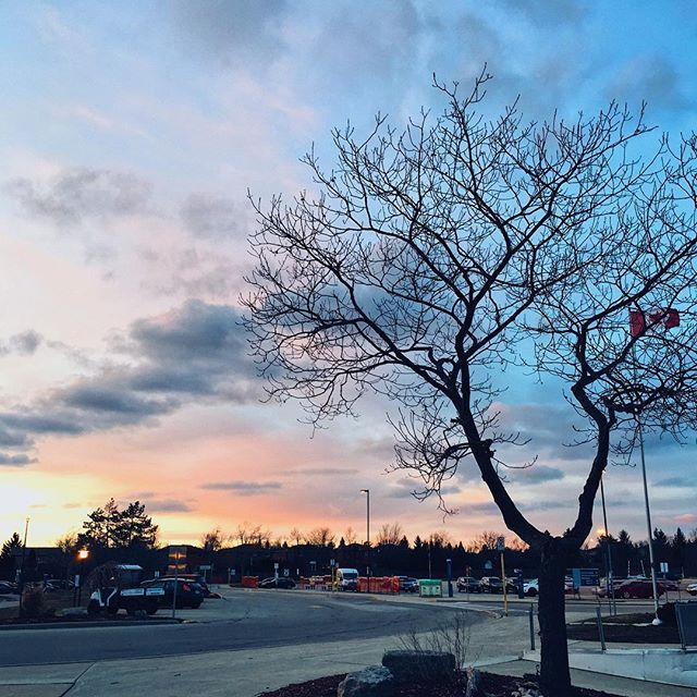 A beautiful sunset at Trafalgar  captured by @mackerman12. We love seeing your shots from around #Sheridan. Remember to share with us using #GetCreative