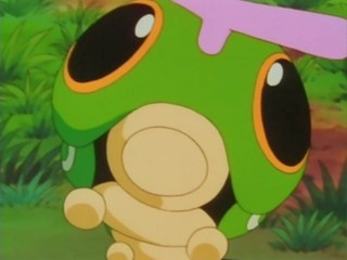 In the Pokemon TV show, Caterpie is the first Pokemon that we see evolve.