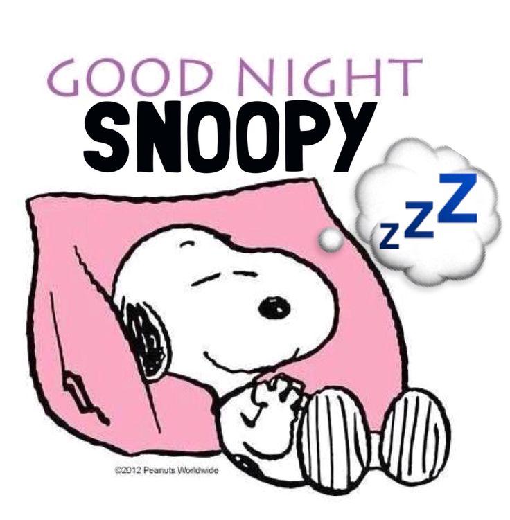 'Good Night', Snoopy....zzzzzzz.