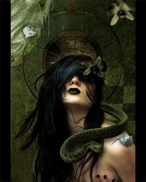 Love Goth type stuff!: Fantasy, Gothic, The Artists, Goddesses, Dark Beautiful, Digital Art, Dark Art, Snakes, Black
