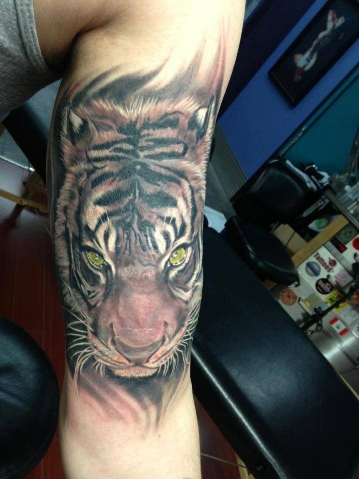 tiger arm tattoo tatuajes pinterest tattoos and. Black Bedroom Furniture Sets. Home Design Ideas
