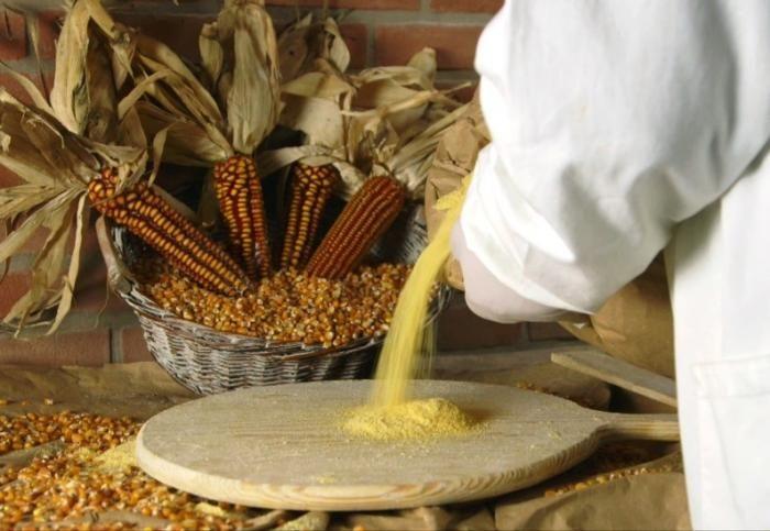 Brescia, piatto del mese di novembre: polenta taragna