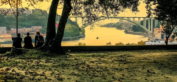 Contemplating the Oporto sunset