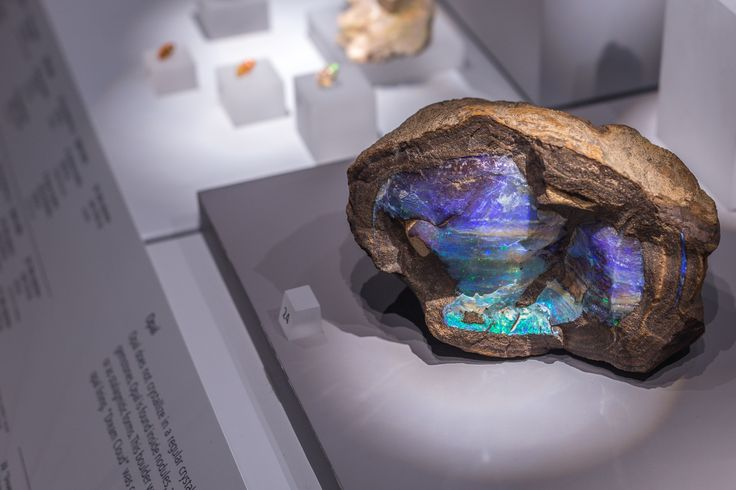 Photograph Boulder Opal by 500 noise on 500px