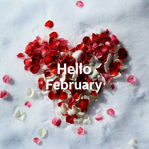 Hello February. Let this be a good month. Im sure it will be
