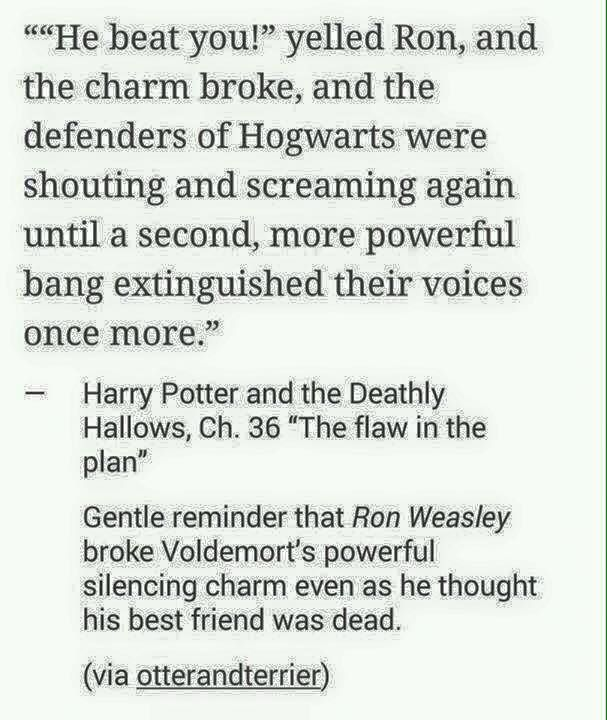 Why wasn't this is the movie? Where's the goddamn appreciation for Ron Weasley aka badass mofu who loved hos best friend to death!