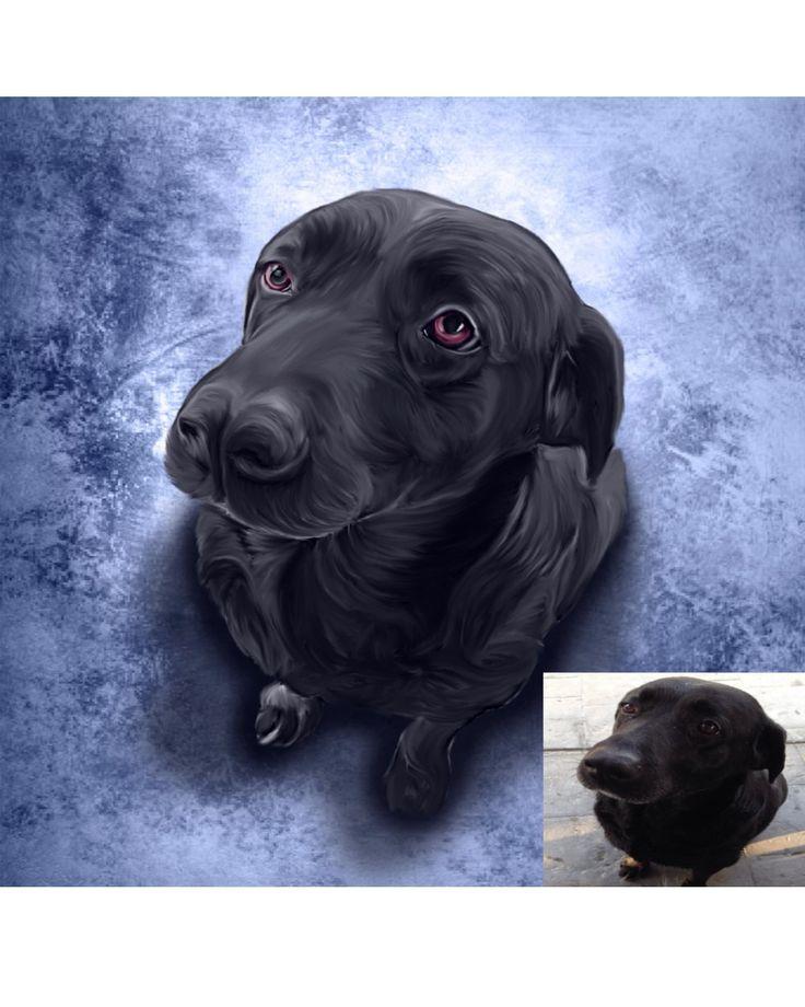 Labrador Pet Portrait Black Lab Art Lab Commission Lab