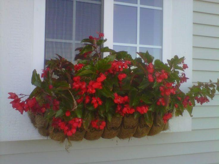 Diy Indoor Herb Garden Box