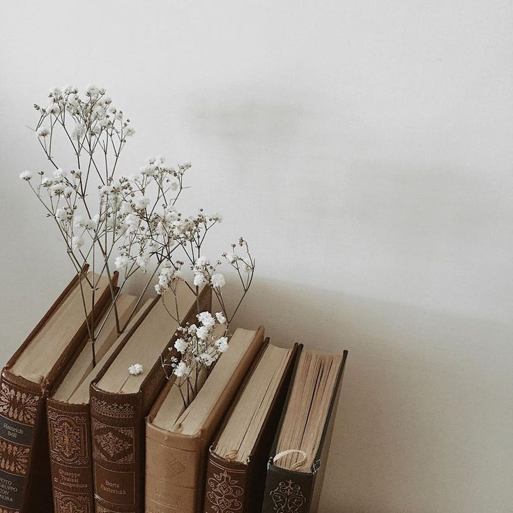 Beautiful Books And Beautiful Flowers In 2020 Book Aesthetic Beige Aesthetic Cream Aesthetic