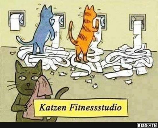 """Résultat de recherche d'images pour """"katze comic"""""""