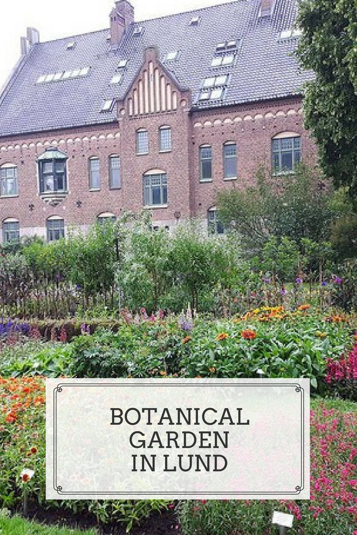 The Botanical garden in Lund (with greenhouse) is part of the university and contains over 7000 different species. Definitely worth a visit!