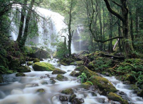 jerusalem+river+waterfall+tasmania   Australia, Tasmania, waterfall along Fisher River in rainforest