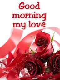 good day my love | Good Morning Sms, Tweet & Facebook Status