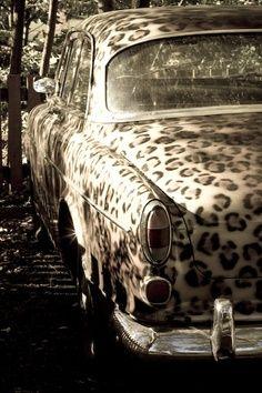 I need a leopard print car
