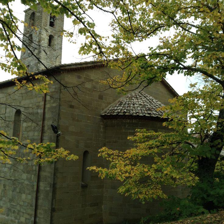 Per raggiungere la pieve di San Cresci una bella strada accompagna il visitatore offrendogli uno spettacolo naturale di notevole fascino con le vecchie querce che la fiancheggiano e i verdi decliv...
