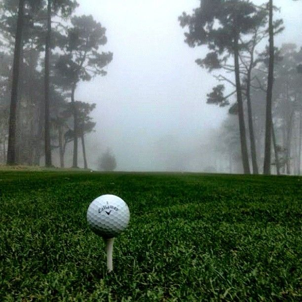 How's this for a #FallGolf pic? 18th tee on a foggy afternoon at Spyglass Hills. #Golf #Spyglass