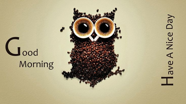Good morning to all coffee lovers
