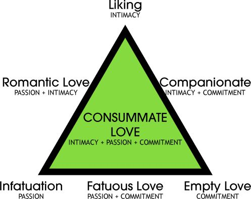 The Triangular Theory of Love-- Adult love is broken down into three components; passion, intimacy, and commitment. When a couples relationship includes all three of these they have reached a consummate love, which is ideal. (p. 336-337)
