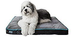 We recommend the best dog beds for outdoors, for extra large dogs, and for orthopedic support. Advice on how to choose the best dog bed and what to look for.