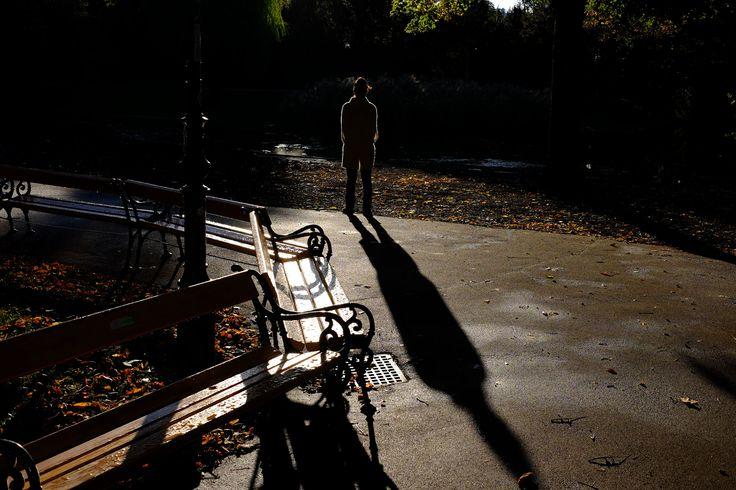 https://flic.kr/p/ZegW3b   sunbeams and shadows
